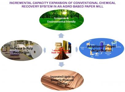Incremental Capacity Expansion Of Conventional Chemical